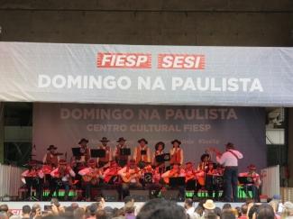 Domingo na Paulista - Viola